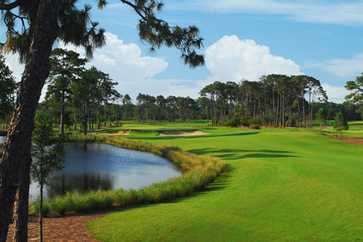 Welcome to Pine Lakes Golf Myrtle Beach - Pine Lakes Country ... on augusta golf map, washington golf map, columbus golf map, naples golf map, charleston sc golf map, greenville golf map, tampa golf map, key west golf map, fort lauderdale golf map, murrells inlet golf map, grand strand golf map, kaanapali golf map, lexington golf map, chambers bay golf map, ocean city golf map, charlotte golf map, carlsbad golf map, columbia golf map, united states golf map, hilton head island golf map,